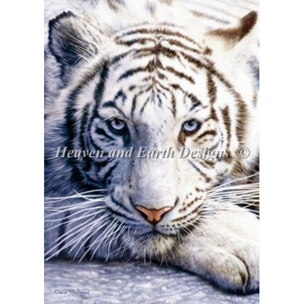 画像1: HAED(Heaven And Earth Designs) - David Penfound - Mini White Tiger  クロスステッチ キット (1)