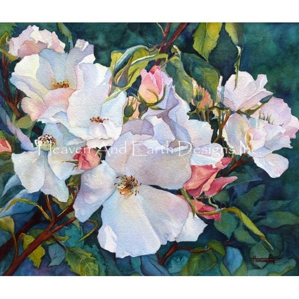 画像1: クロスステッチ図案Portland Roses-HAED(Heaven and Earth Designs) (1)