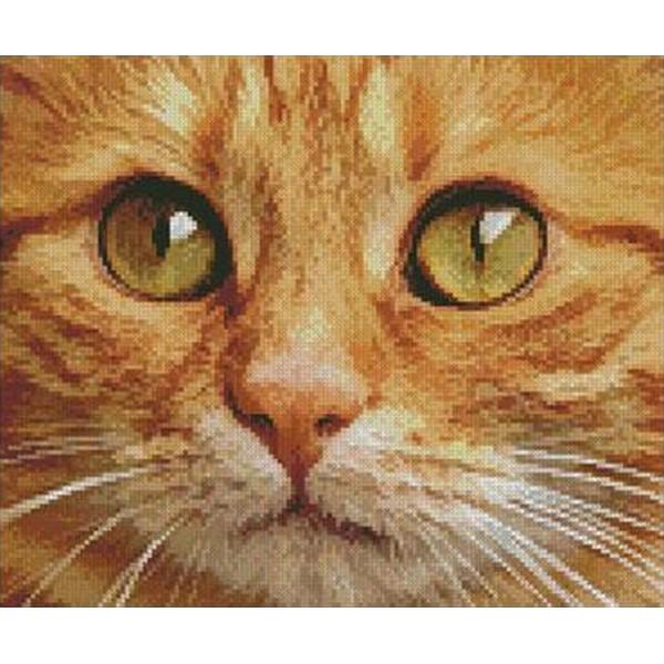 画像1: クロスステッチキットGinger Cat Close Up 14ctアイーダ - Artecy (1)